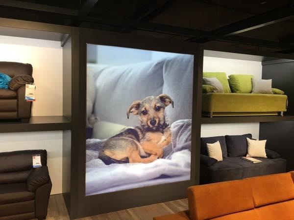 blog_01_Furnituremall